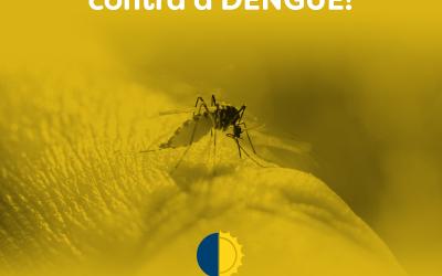 Prevenção contra a dengue!